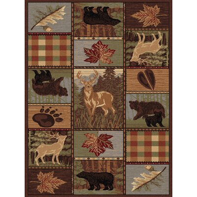 Alers Brown Area Rug Rug Size: Rectangle 4 x 6