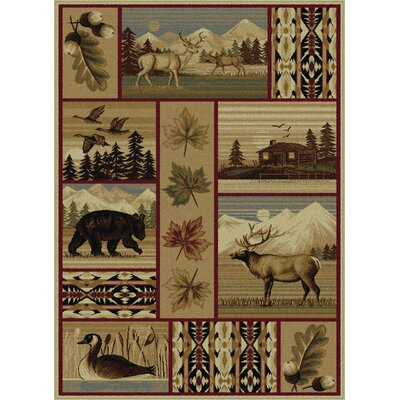 Littlefield Brown/Beige Area Rug Rug Size: Rectangle 4' x 6'