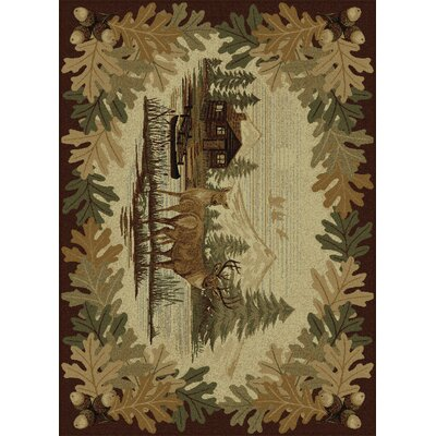 Center Brown Area Rug