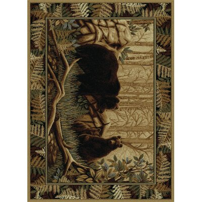 Josephine Beige/Brown Area Rug Rug Size: Rectangle 4 x 6