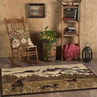 Cocheta Brown Area Rug Rug Size: Rectangle 311 x 53