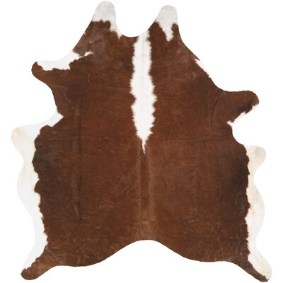 Canyonlands Brown Area Rug