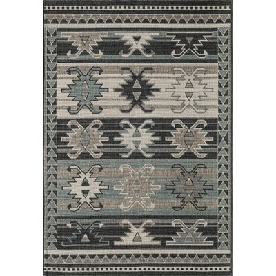 Axel Sage/Gray Indoor/Outdoor Area Rug Rug Size: Rectangle 53 x 76