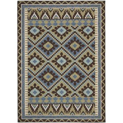 Rangely Green/Chocolate Indoor/Outdoor Area Rug Rug Size: 67 x 96