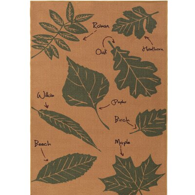 Cascade Range Cashew/Rifle Green Area Rug Rug Size: Rectangle 5 x 8