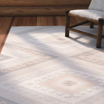 Torreys Hand-Woven Light Gray Area Rug Rug Size: 4 x 6