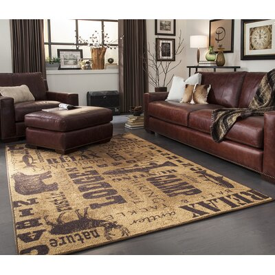 Armutalan Brown Area Rug Rug Size: 5 x 8