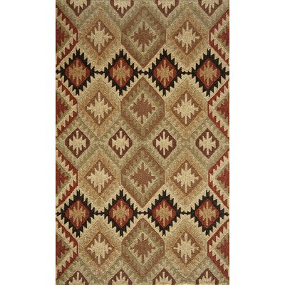 Madison Handmade Indoor/Outdoor Area Rug Rug Size: 5 x 8