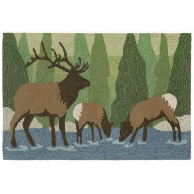 Folsom Elk Green Indoor/Outdoor Area Rug Rug Size: 2 x 3