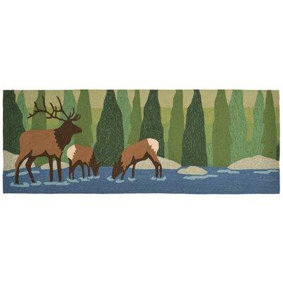 Folsom Elk Green Indoor/Outdoor Area Rug Rug Size: Runner 23 x 6