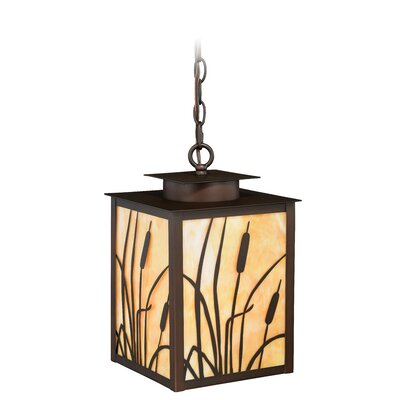 Perris 1-Light Outdoor Hanging Lantern