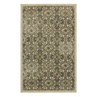 Calistoga Warner Olive Green/Taupe Area Rug Rug Size: Rectangle 8 x 5