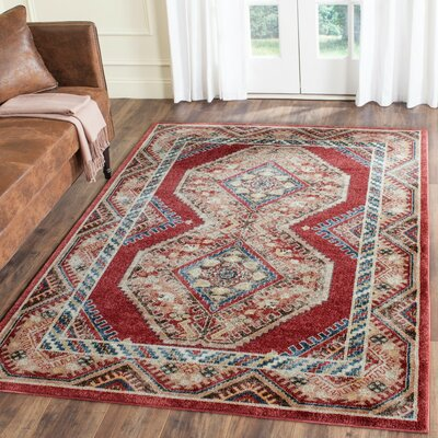 Isanotski Red/Rust Area Rug Rug Size: Runner 23 x 8