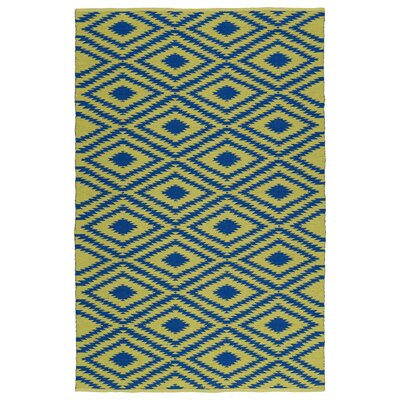 Greenfield Yellow/Navy Indoor/Outdoor Area Rug Rug Size: 2 x 3