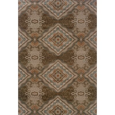 Horasan Gray/Brown Area Rug Rug Size: Rectangle 67 x 96