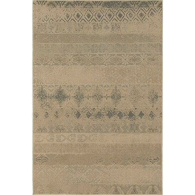 Bixby Tan/Blue Area Rug Rug Size: 53 x 76