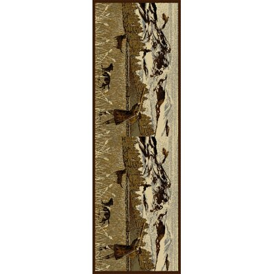 Cocheta Brown Area Rug Rug Size: Runner 27 x 73