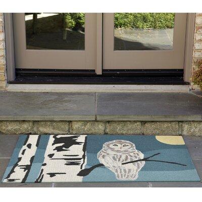 Folsom Hand-Tufted Blue Indoor/Outdoor Area Rug Rug Size: 2'6