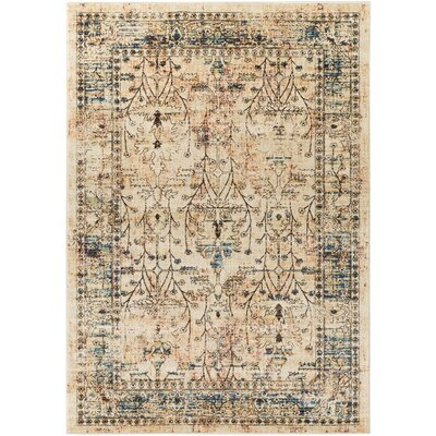 Ipasha Dark Brown/Navy Area Rug Rug Size: Rectangle 2 x 3