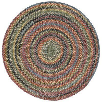 Sahale Green Variegated Doormat Rug Size: Round 13