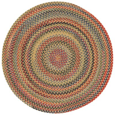 Sahale Gold Variegated Area Rug Rug Size: Round 13