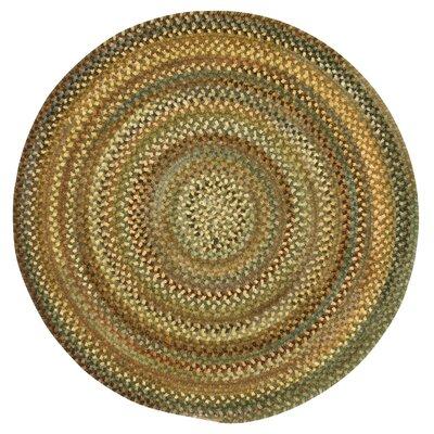 Kaweah Green Variegated Area Rug Rug Size: Round 13