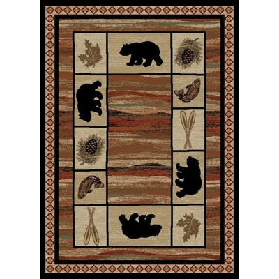 Durango Brown Area Rug Rug Size: 8' x 10'
