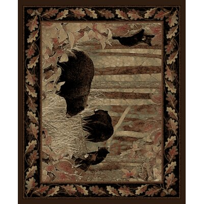 Windsor Lane Smokey Mountains Brown Area Rug Rug Size: 5 x 8