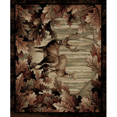 Windsor Lane Whitetail Woods Brown Area Rug Rug Size: 5 x 8