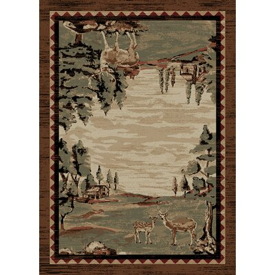 Chateaux Brown Area Rug Rug Size: 5 x 8