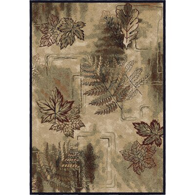 Dogwood Parchment Beige/Green Area Rug