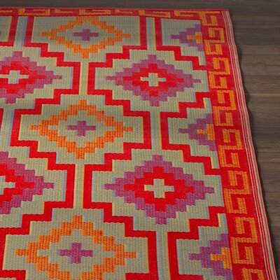 Hudson Square Red Indoor/Outdoor Area Rug Rug Size: Rectangle 4 x 6