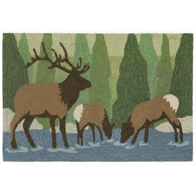 Folsom Elk Green Indoor/Outdoor Area Rug Rug Size: 2 x 3