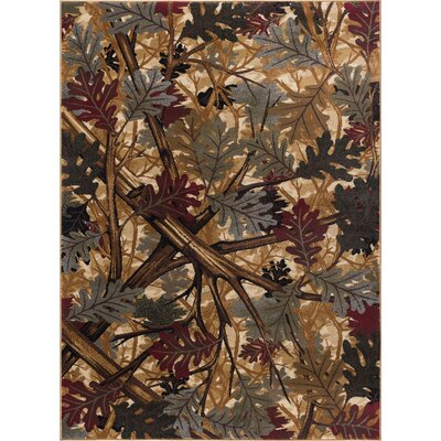 Bearpaw Multi Area Rug Rug Size: 53 x 73