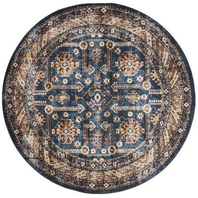 Isanotski Brown/Blue Area Rug Rug Size: Round 67