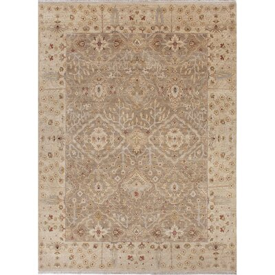 Houx Oatmeal / Soft Gold Oriental Rug Rug Size: Rectangle 12 X 15