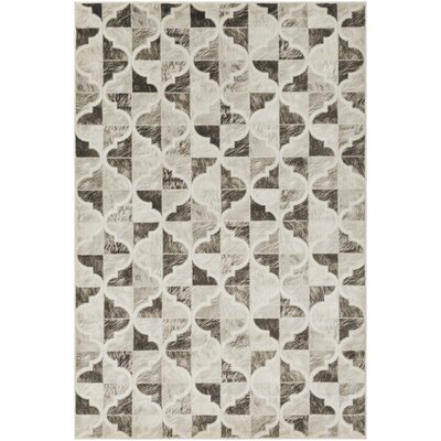 Caigan Dark Brown/Black Area Rug Rug Size: Rectangle 2 x 3