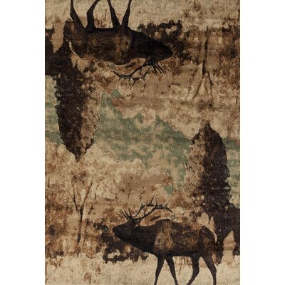 Pippen Wanderer Brown/Beige Area Rug Rug Size: Rectangle 53 x 72