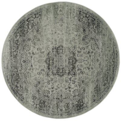 North Adams Green Area Rug Rug Size: Round 6