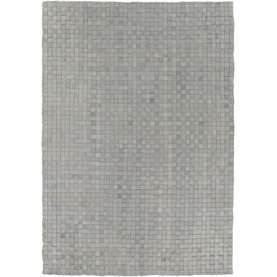 Creede Hand Woven Gray Indoor/Outdoor Area Rug Rug Size: 8 x 10