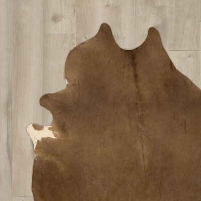 La Ca�ada Flintridge Handmade Brown Area Rug