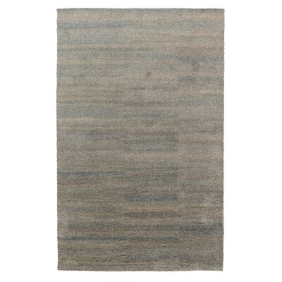 Chicasaw Hand-Knotted Steel Area Rug Rug Size: 5 x 8