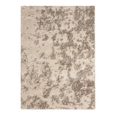 Abbey Granite Area Rug Rug Size: 53 x 75