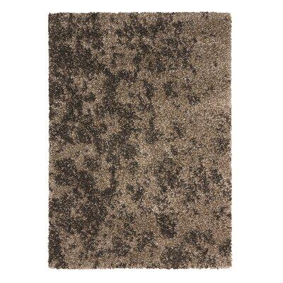 Katlin Cobblestone Brown Area Rug Rug Size: 53 x 75