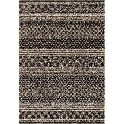 Park Black/Ivory Area Rug Rug Size: 53 x 76