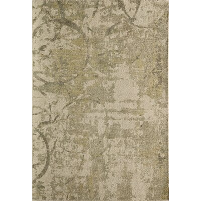 Raiden Hand-Tufted Green/Ivory Area Rug Rug Size: Rectangle 36 x 56