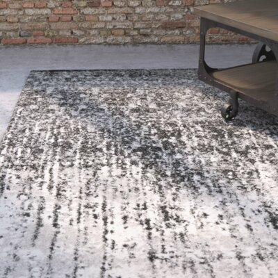 Twentynine Palms Black/Light Grey Area Rug Rug Size: 4 x 6