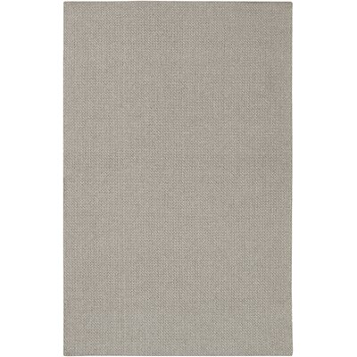 Tabeguache Hand-Woven Gray Indoor/Outdoor Area Rug Rug Size: Rectangle 53 x 78