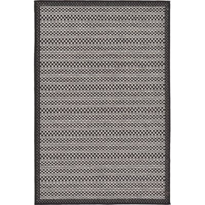 Dakota Gray Outdoor Area Rug Rug Size: 33 x 5