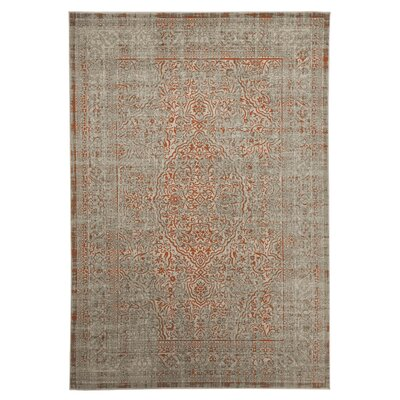 Abel Gray/Orange Area Rug Rug Size: 53 x 76